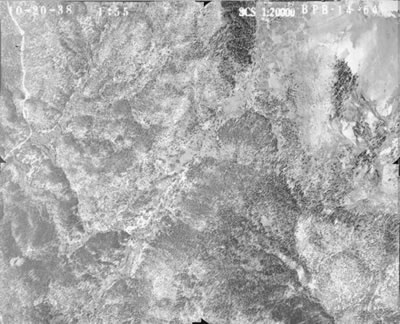 One of a series of aerial photos taken in 1938-39 for a forest and soil survey.