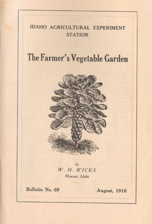 The Farmer's Vegetable Garden
