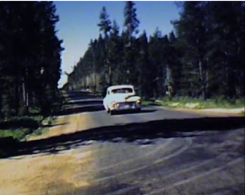 A pale blue car driving on a road in the forest.