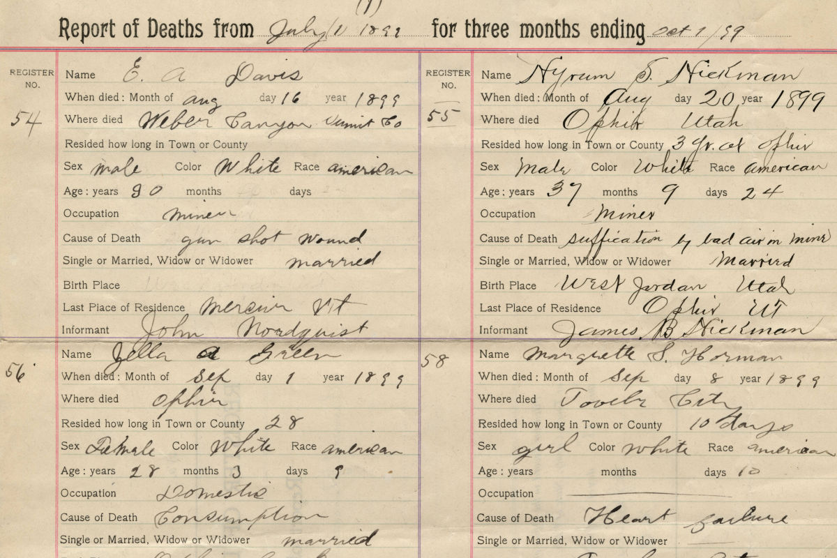 A scan of the Tooele County death records.